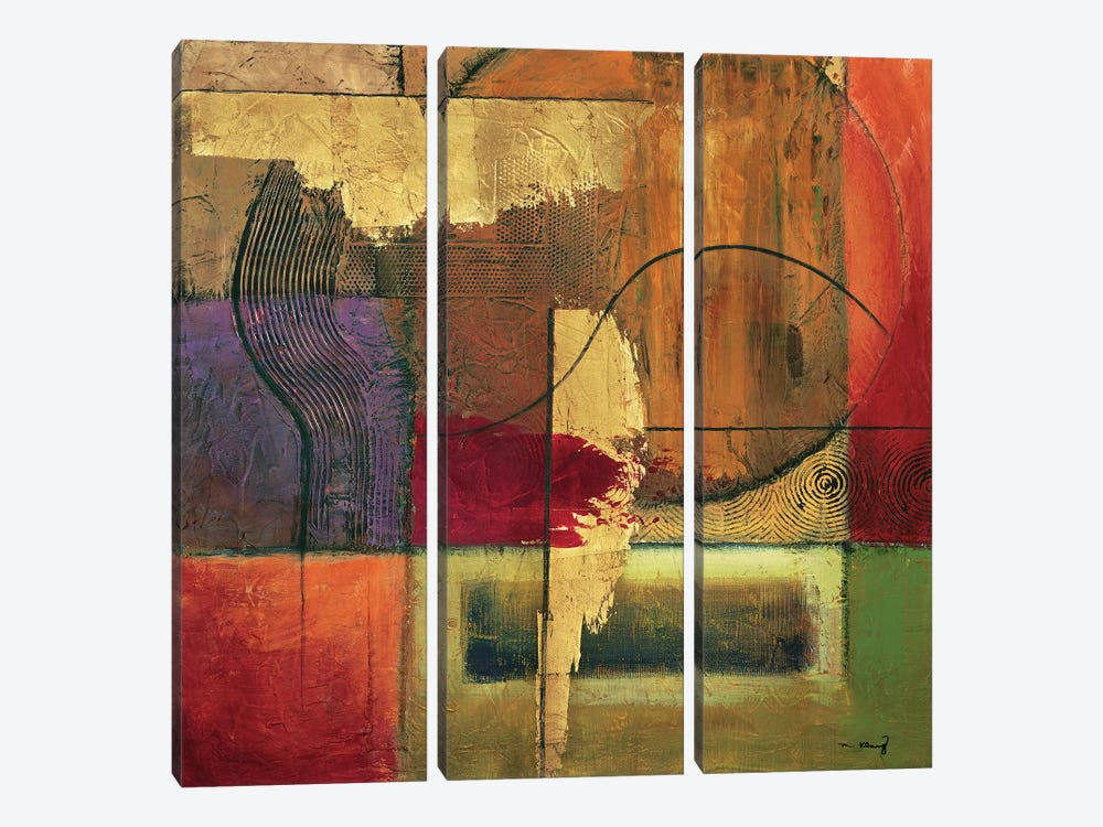 Opulent Relief II by Mike Klung 3-piece Canvas Art Print