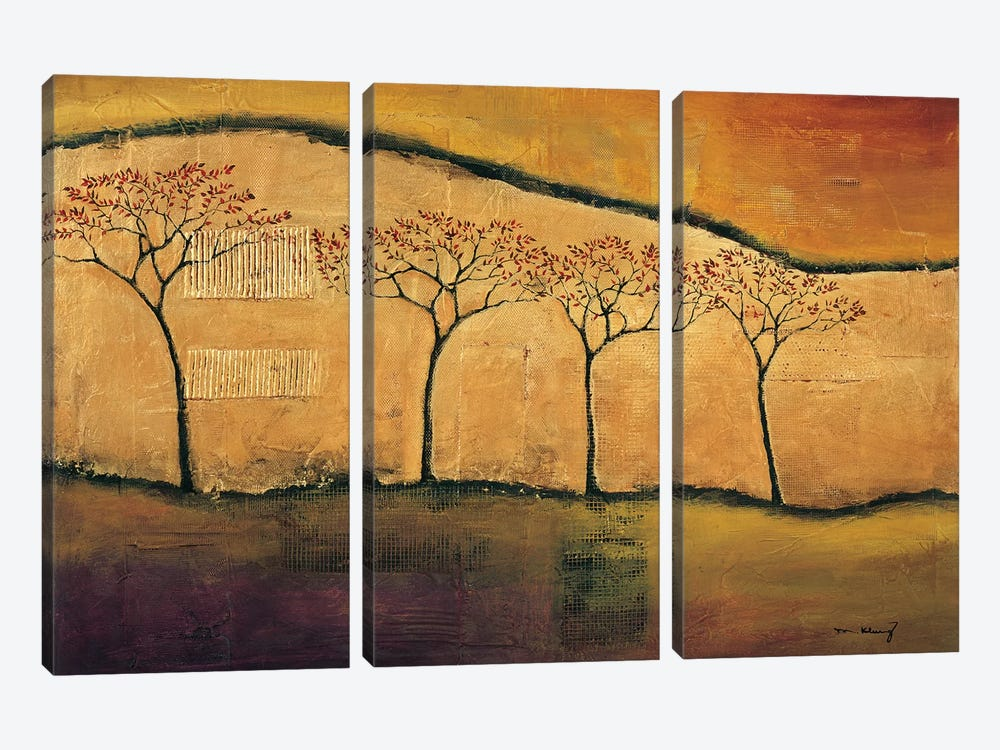 Torn Through I by Mike Klung 3-piece Canvas Artwork