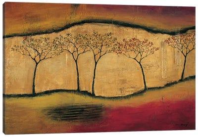 Torn Through II Canvas Art Print