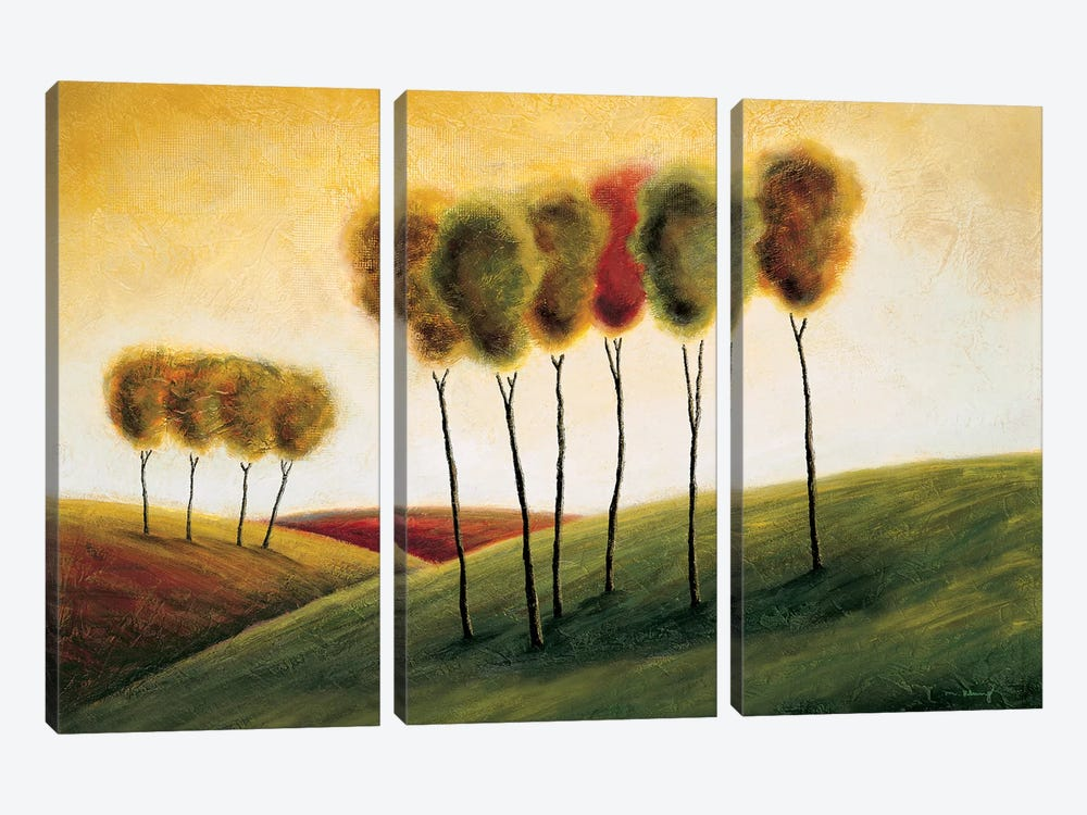 A New Morning II by Mike Klung 3-piece Art Print