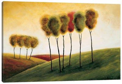 A New Morning II Canvas Art Print