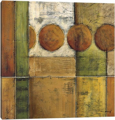 Diversity II Canvas Art Print
