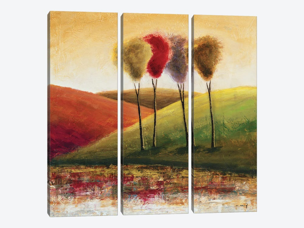 Endless Hills I by Mike Klung 3-piece Canvas Artwork