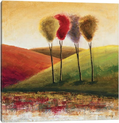 Endless Hills I Canvas Art Print