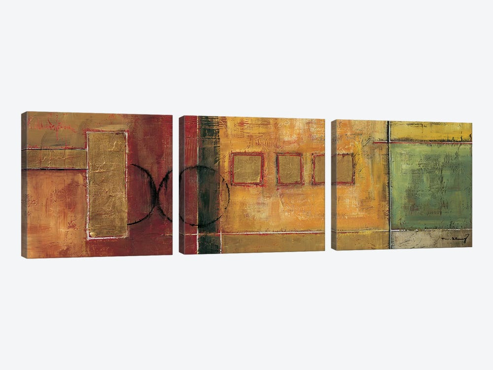 Harmony I by Mike Klung 3-piece Canvas Artwork