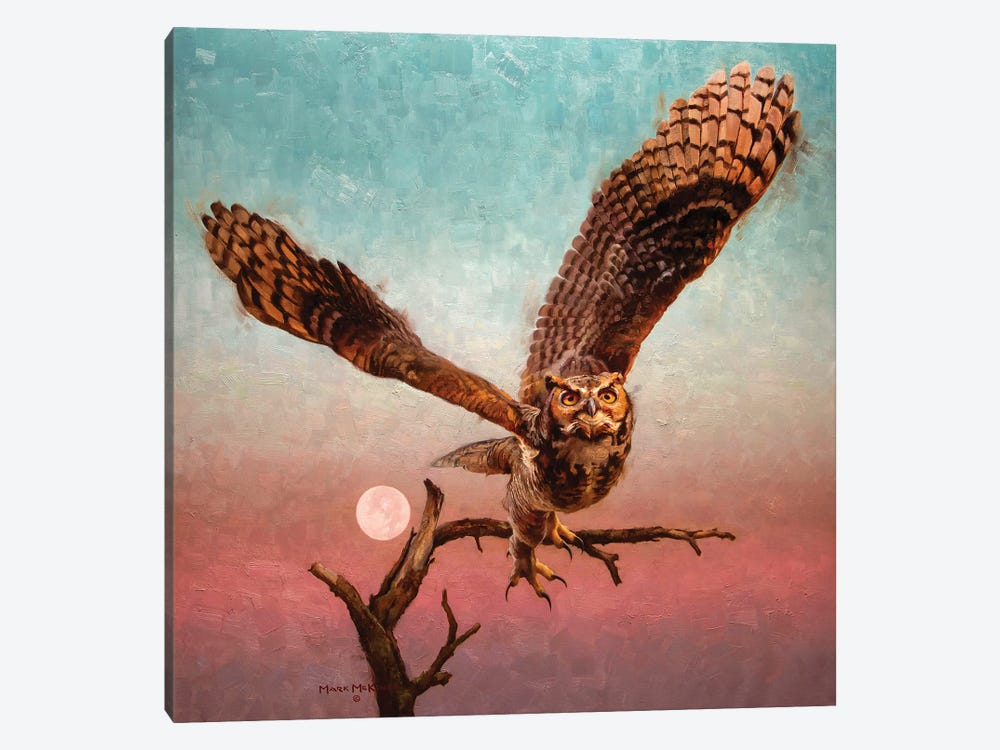 Into The Night by Mark McKenna 1-piece Canvas Wall Art