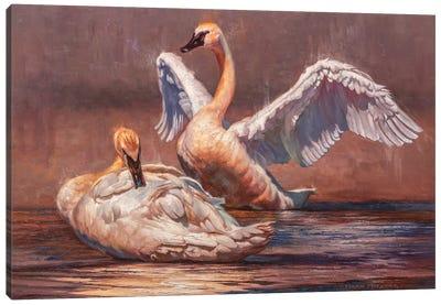 Minuet Canvas Art Print