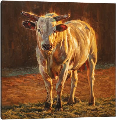Rodeo Gold Canvas Art Print