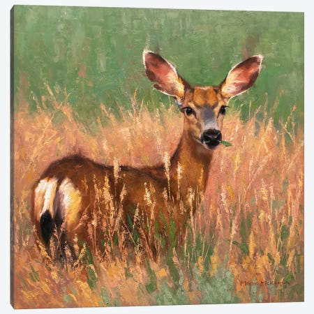 Sweetgrass Canvas Print #MKM23} by Mark McKenna Canvas Art