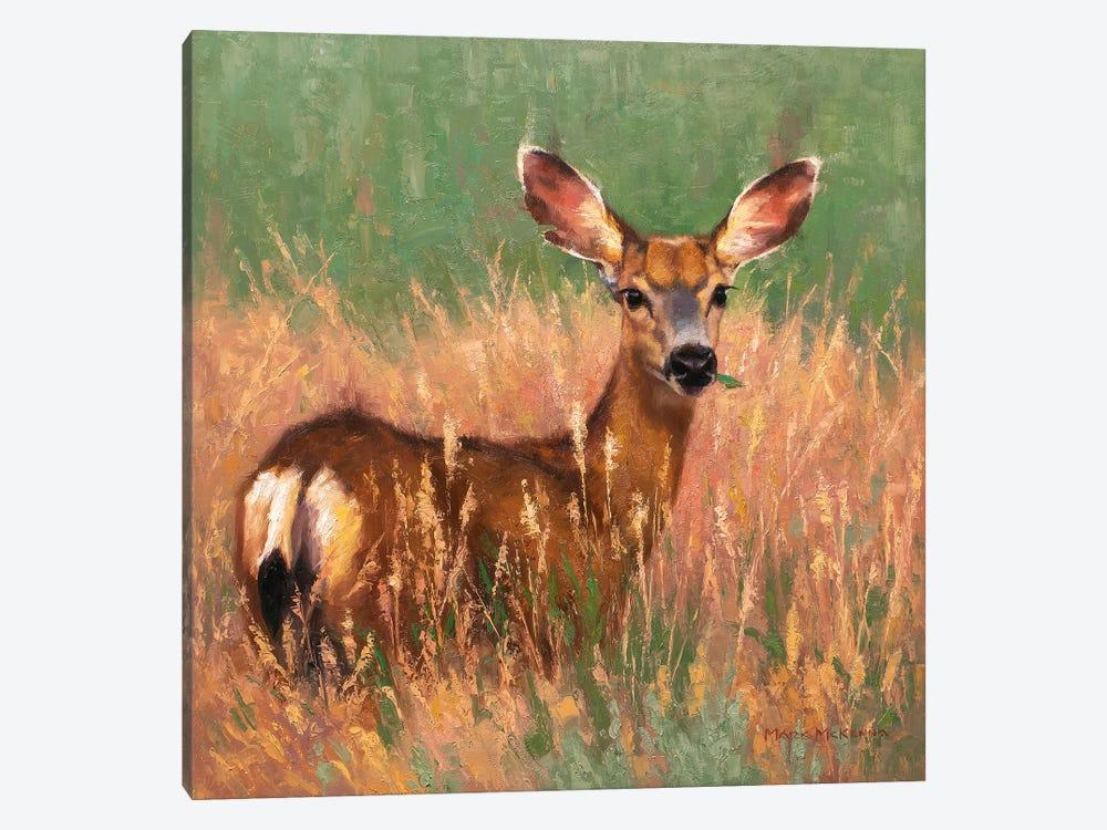 Sweetgrass by Mark McKenna 1-piece Canvas Art