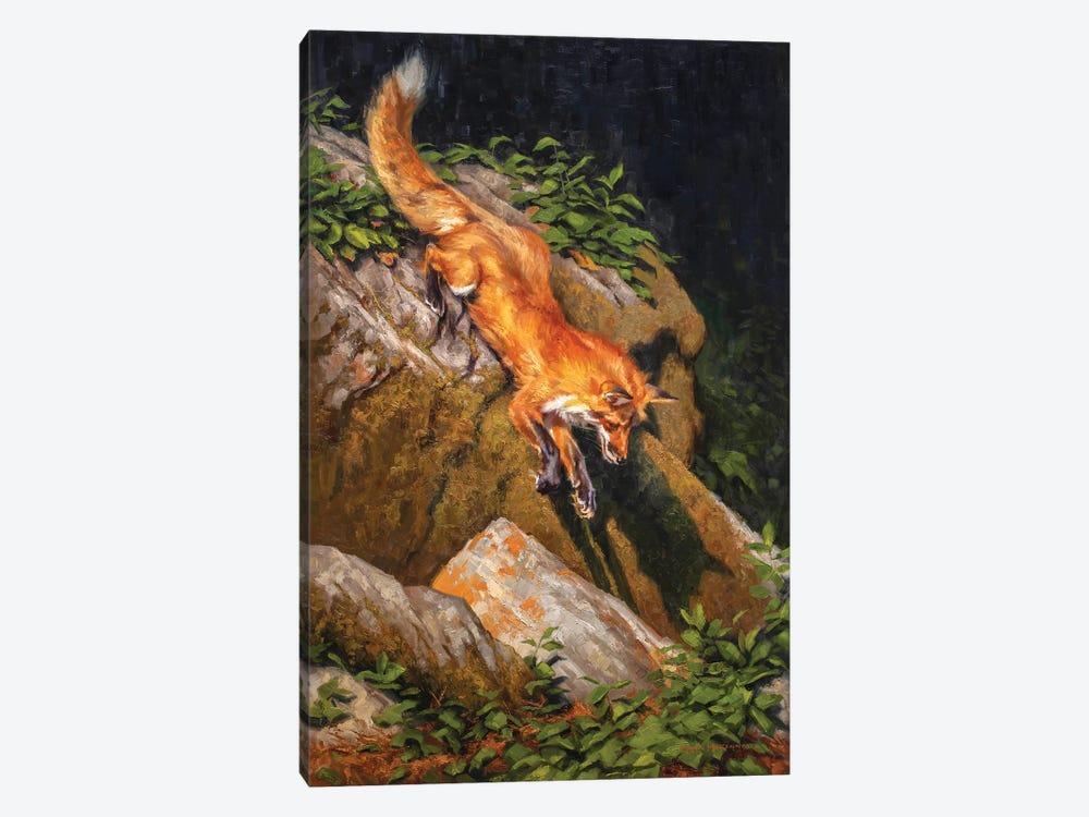 The Red Bandit by Mark McKenna 1-piece Canvas Art