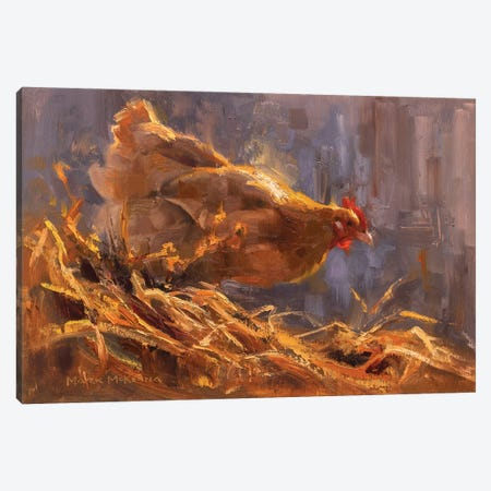 Hen's Haven Canvas Print #MKM9} by Mark McKenna Canvas Art