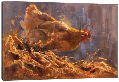 Hen's Haven Canvas Art Print