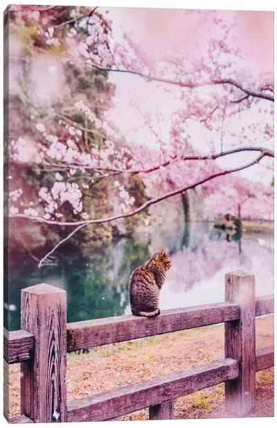 Tender And Pink Canvas Art Print