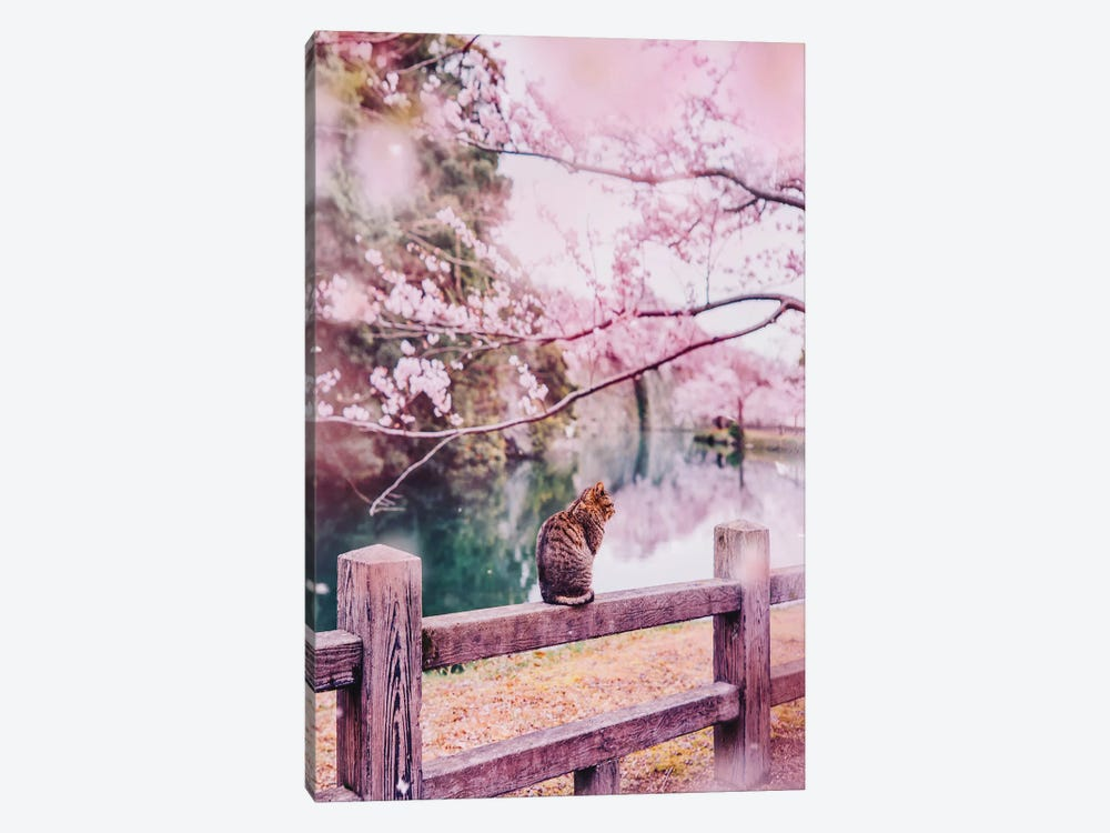 Tender And Pink by Hobopeeba 1-piece Canvas Wall Art