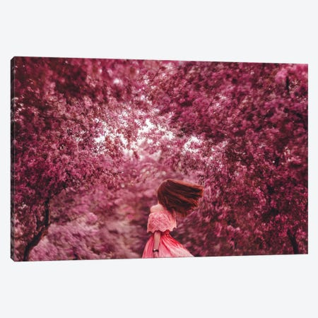The Blossom Is Everywhere Canvas Print #MKV105} by Hobopeeba Canvas Print