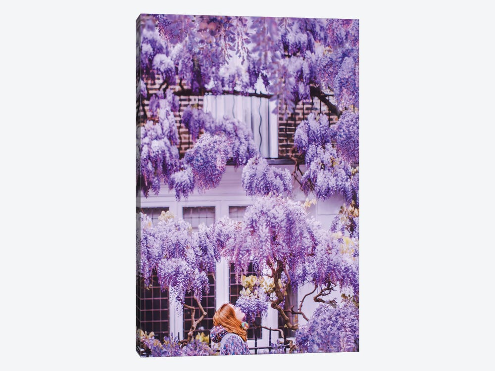 Wisteria In London! by Hobopeeba 1-piece Canvas Art