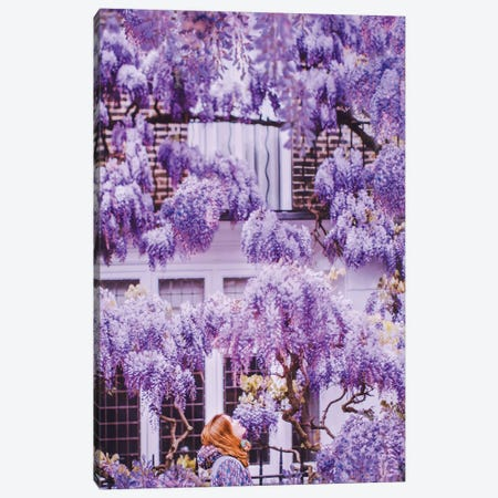 Wisteria In London! Canvas Print #MKV132} by Hobopeeba Canvas Art Print