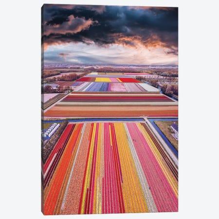 Infinity Fields Of Netherlands Canvas Print #MKV144} by Hobopeeba Canvas Art Print