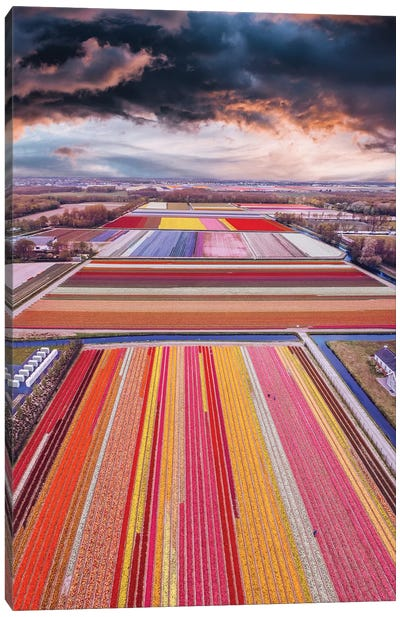 Infinity Fields Of Netherlands Canvas Art Print