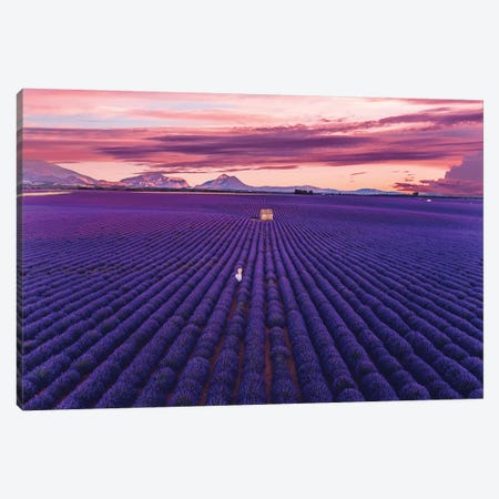 Lavander Sunset Canvas Print #MKV147} by Hobopeeba Canvas Art Print