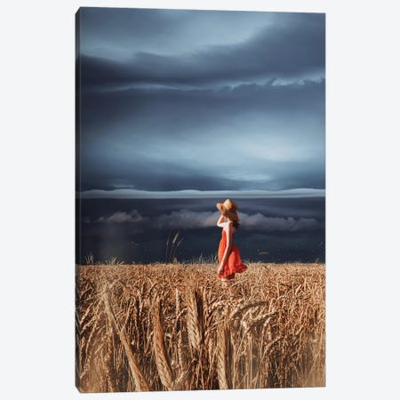 Wheat Fields And Thunderstorm Canvas Print #MKV157} by Hobopeeba Canvas Wall Art