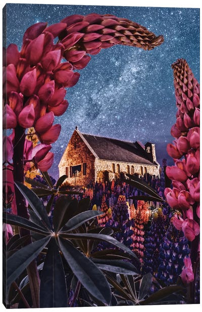 Night Lupins At Lake Tekapo I Canvas Art Print