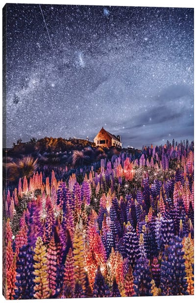 Night Lupins At Lake Tekapo III Canvas Art Print