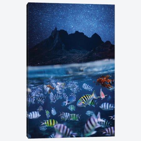 The Night Mauritius Canvas Print #MKV167} by Hobopeeba Art Print