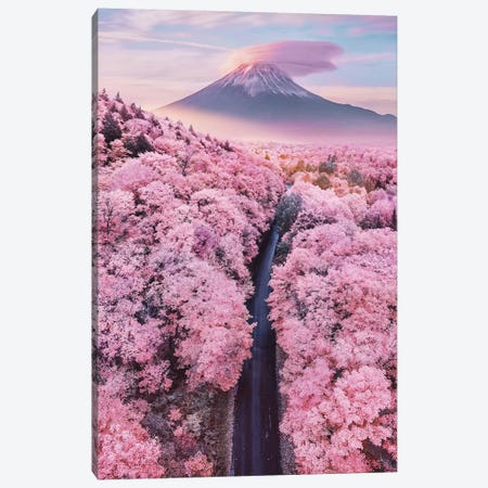About Pink Endless Canvas Print #MKV174} by Hobopeeba Canvas Wall Art