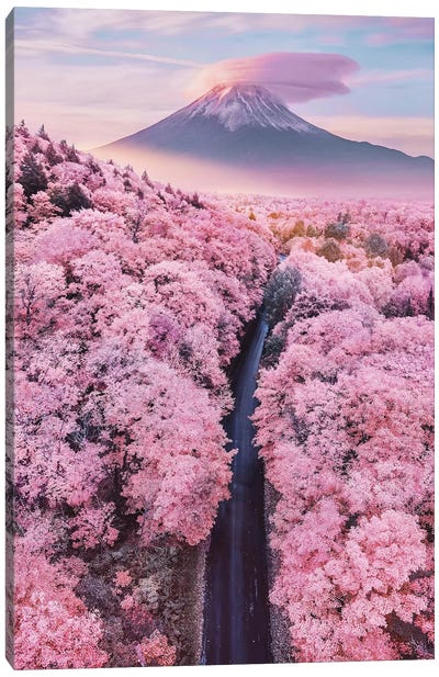 About Pink Endless Canvas Art Print
