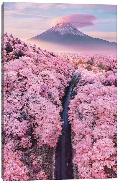 About Pink Endless Canvas Art Print