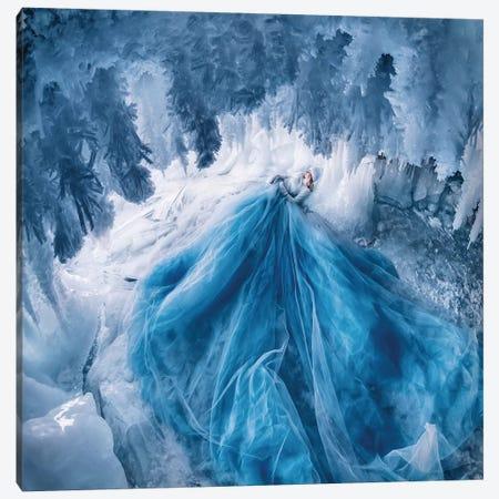 Ice Cave With Shaggy Icicles Canvas Print #MKV178} by Hobopeeba Canvas Print