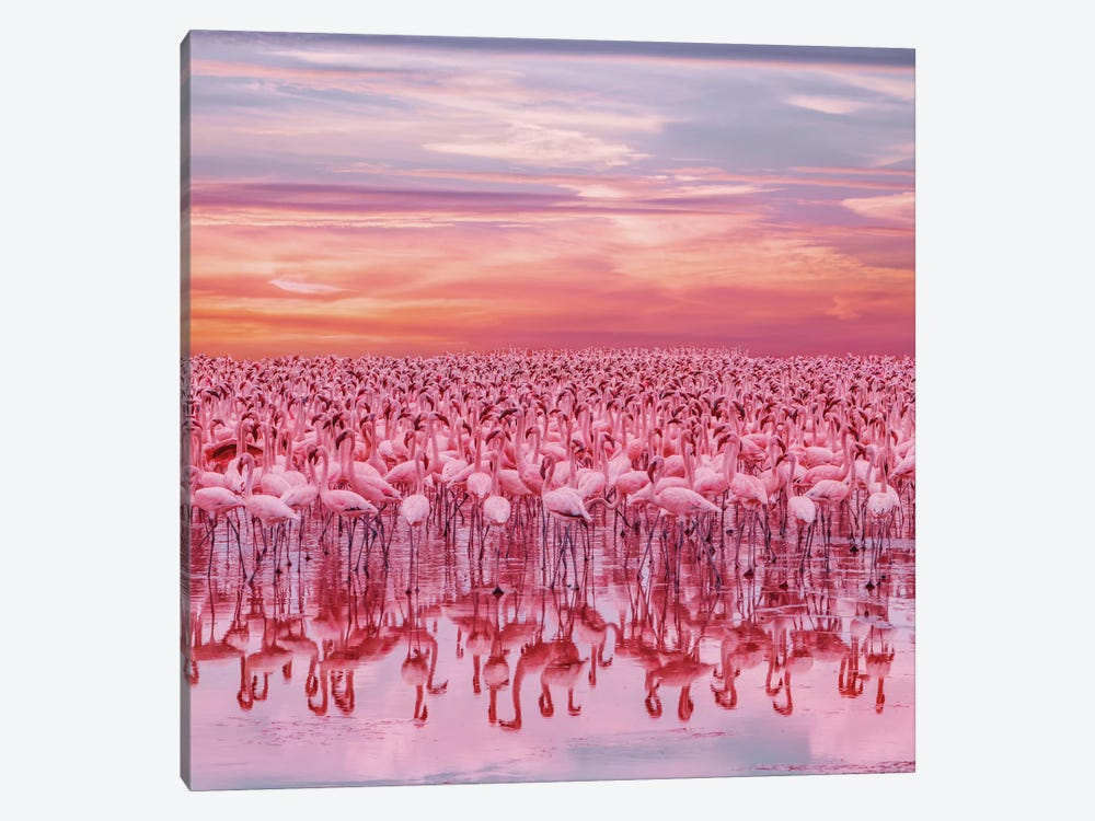 Flamingo's Sunset by Hobopeeba 1-piece Art Print