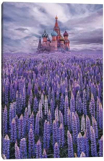 Lupine Field On Red Square Canvas Art Print