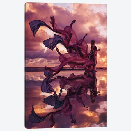 Emperor Elemental Canvas Print #MKV27} by Hobopeeba Canvas Artwork