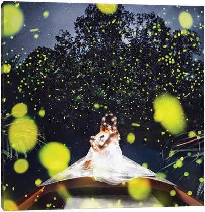 Fireflies In Bohol Canvas Art Print