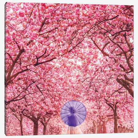 Hanami Season Canvas Print #MKV36} by Hobopeeba Canvas Art Print