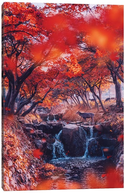 Heaven. Momiji Season Canvas Art Print