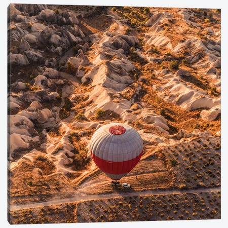 Landing Canvas Print #MKV47} by Hobopeeba Canvas Art