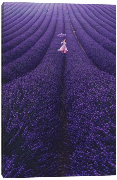 Lavender France Canvas Art Print