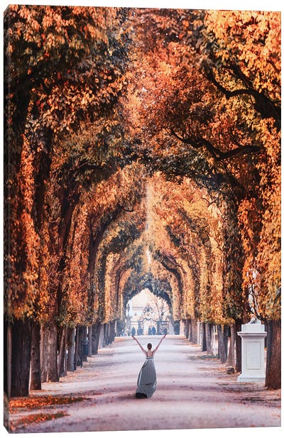 Autumn In Vienna Canvas Art Print