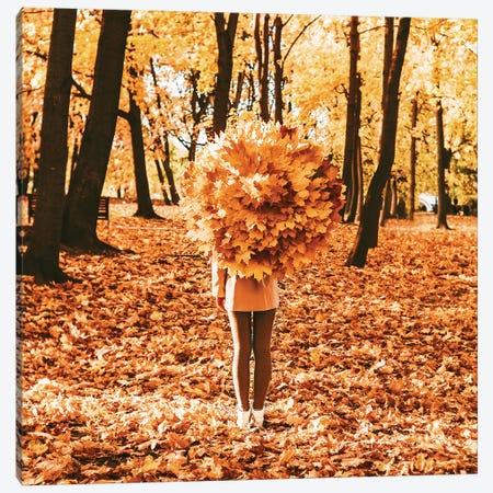 Autumn Magic Canvas Print #MKV6} by Hobopeeba Canvas Print