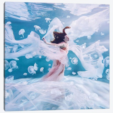 Ocean Canvas Print #MKV77} by Hobopeeba Canvas Print