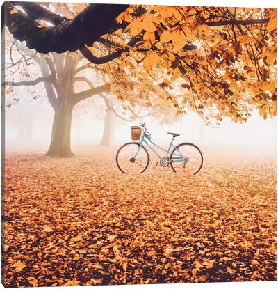 Orange Everywhere Canvas Art Print