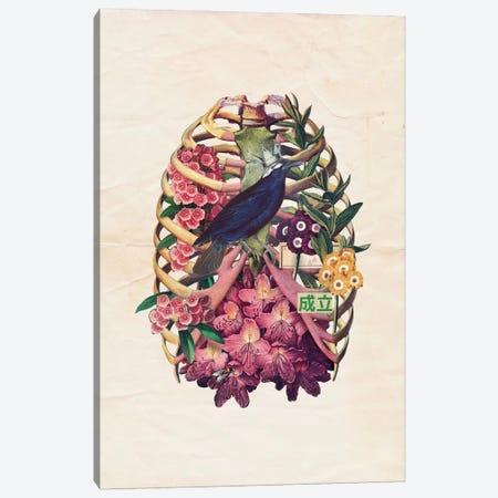 Omen Canvas Print #MLA10} by Marcel Lisboa Canvas Art