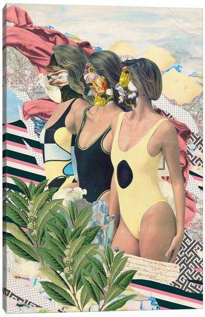 Plenitude Canvas Art Print