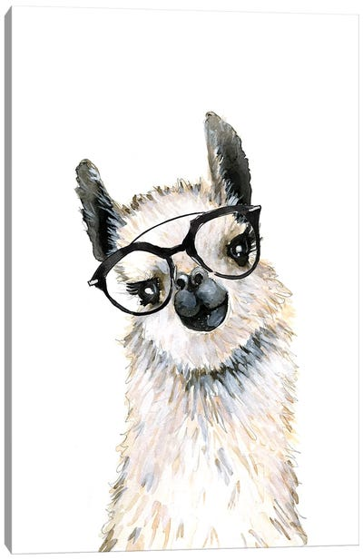 Llama With Glasses Canvas Art Print
