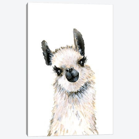 Llama Canvas Print #MLC103} by Mercedes Lopez Charro Canvas Art Print