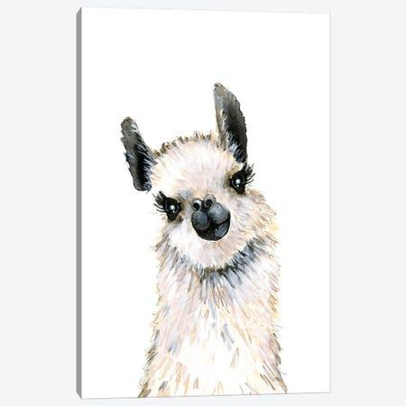 Llama Canvas Print #MLC103} by Mercedes Lopez Charro Canvas Art Print